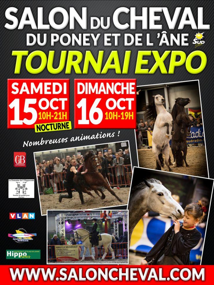 Salon du cheval du poney et de l 39 ne de tournai et de mons for Salon du cheval albi
